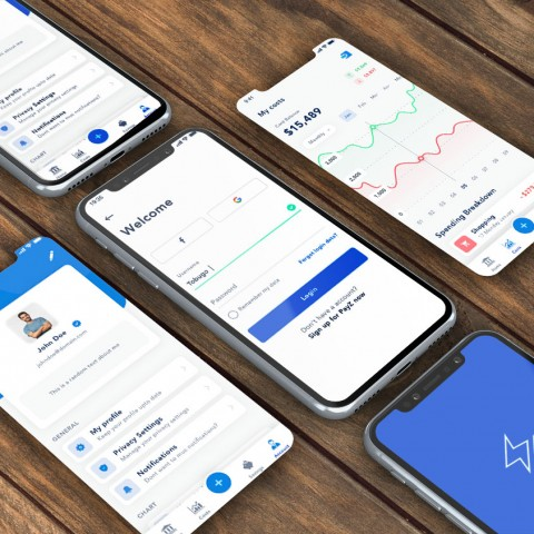 PayZ-App Design